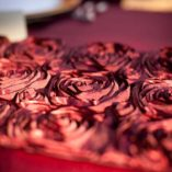 20 merlot ribbon rose