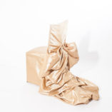 gold bustle chair covers (1)
